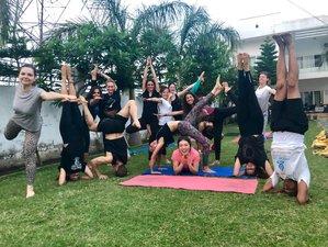 6 Day Revitalising Immunity Builder Yoga Retreat in Rishikesh