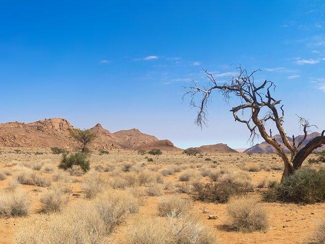 Safaris on Horseback