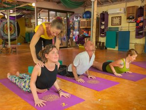 6 Day Reiki, Prema Healing Course (Level 1), and Yoga Retreat in Ao Nang, Krabi
