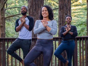 6 Day Stillness and Bliss, a Fall Meditation Retreat with Yoga in Gualala, California