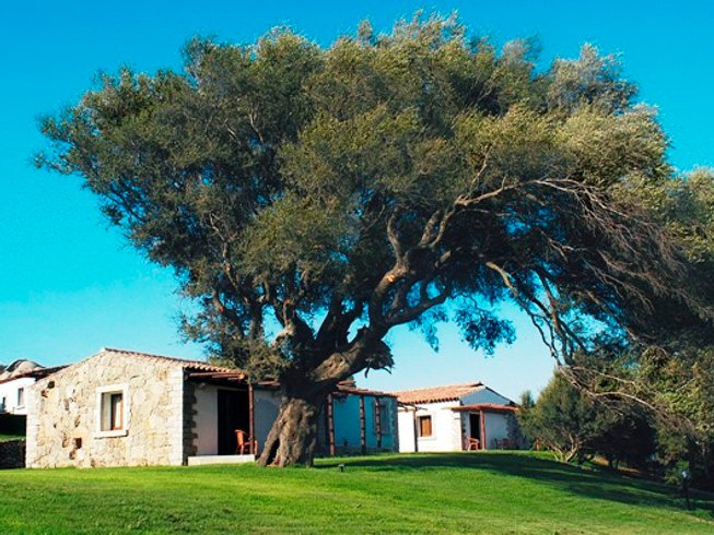 7 Days North to South Culture, Wine, and Cooking Holiday in Sardinia, Italy