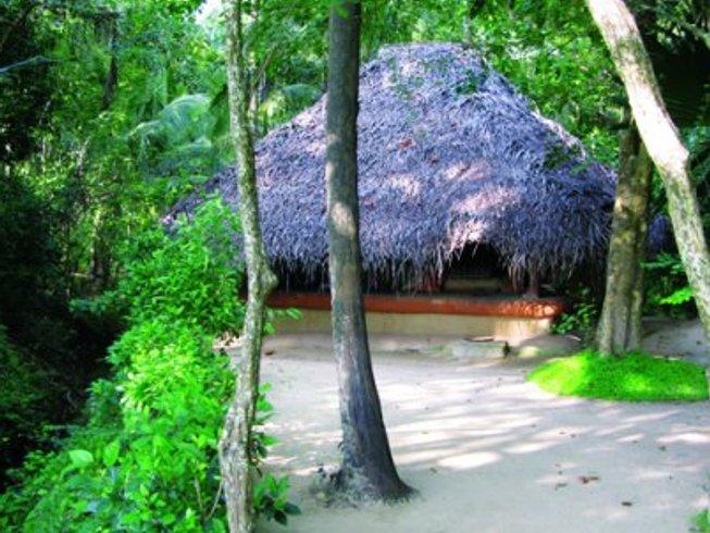 15 días retiro de yoga consciente en Dambulla, Sri Lanka
