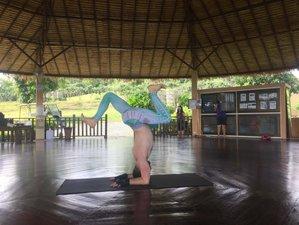 6-Daagse Voedingstherapie voor Constipatie en Yoga Retraite in Chiang Mai, Thailand
