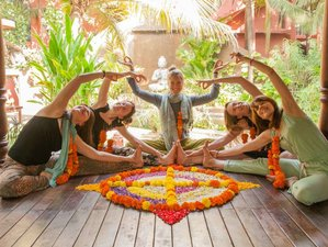 8-Daagse Harmony Yoga in India