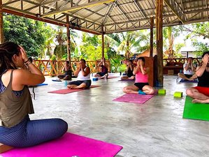 21 Days Wellness, Meditation, Yoga, Detox, Muay Thai, Crossfit, Phetchabun, Thailand