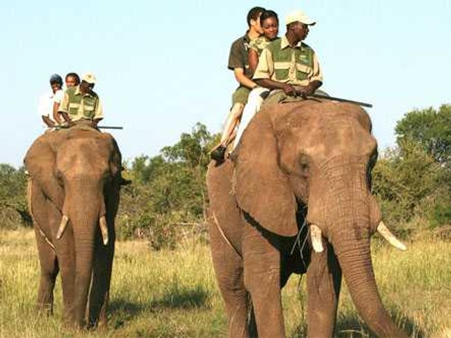 13 Days Awe-Inspiring Safari South Africa and Zimbabwe
