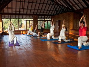 6 Days Ashtonishing Ashtanga Yoga Retreat in Gokarna, India