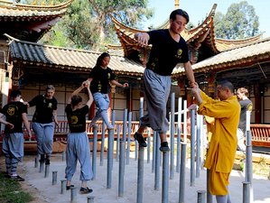 6-Month Authentic Shaolin Kung Fu Training in the Official Shaolin Temple Yunnan, Kunming City
