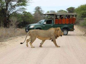 5 Day Big 5 Kruger and Sabi Sand Safari