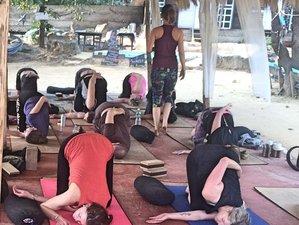 8 Days Re-Energizing Holistic Meditation and Yoga Holiday in Goa, India