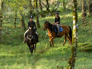 8 Day Exclusive All-Inclusive Horse Riding Retreat in Figeac, Occitanie