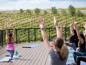 6 Day Napa Valley Yoga Holiday with Wine, Hiking, and Biking