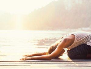 4 Tage Kundalini Yoga Retreat am Wunderschönen Vierwaldstättersee in Vitznau