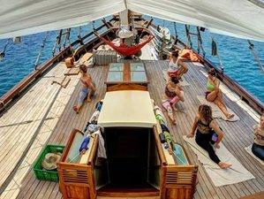 8 días de buceo, esnórquel, navegación y retiro de yoga en el Parque Nacional de Komodo, Indonesia