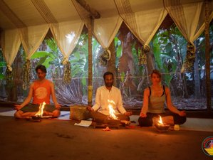 6 Days Pranic Energy Healing Yoga Holiday in Kerala, India