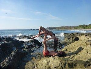 """8 jours en stage de yoga et detox """"les enseignements d'Osho"""" à Nosara, Costa Rica"""