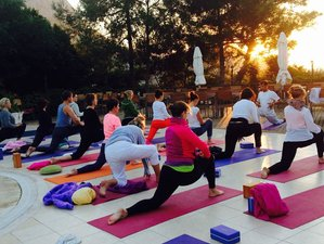 25 Day Specialized 200-Hour Yoga Teacher Training in Dharamsala, Himachal Pradesh