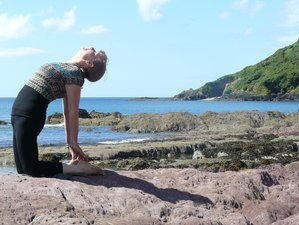 4 Day Wilderness and Wildlife Lovers' Calming Yoga Retreat in Isle of Mull, Scotland