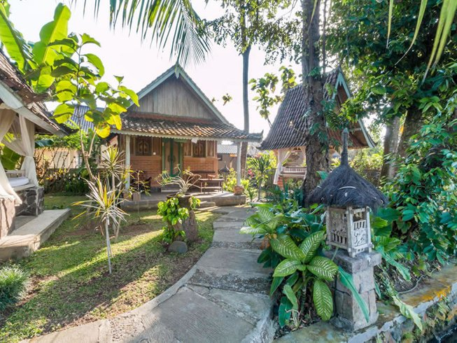 8-Daagse Yoga Retreat in Bali, Indonesië