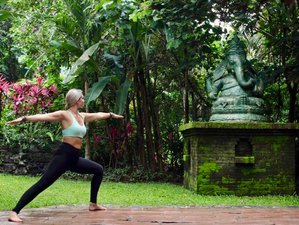 8 Day Luxury and Fun Adventure Holiday with Fitness and Yoga in Canggu, Bali