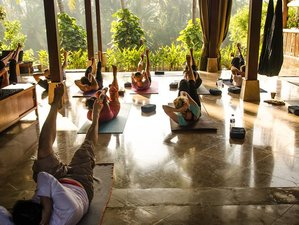 8 Days Transcendental  Meditation, Yoga in Bali