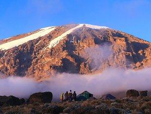 5 Days Marangu Route Mountain Climbing and Safari Tour in Mount Kilimanjaro, Tanzania
