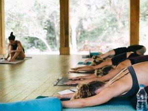 21 Day 200-Hour Intensive Yoga Teacher Training in Byron Bay Hinterland