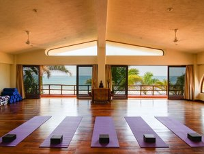 7 Day New Year's Yoga Retreat with Temezcal Ceremony and Whale Watching on the Mexican Pacific