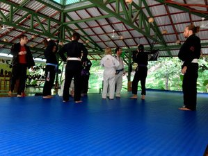 8 Days All Inclusive Brazilian Jiu-Jitsu Camp in Nosara, Costa Rica