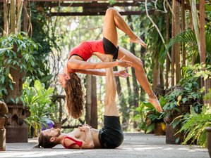 2 Days Cat Ba Island Acro Yoga Retreat in Vietnam