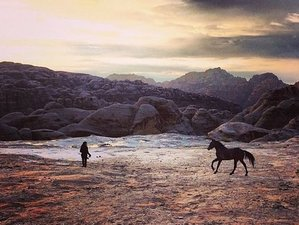 9 Days Jordan Ancient Horse Retreat with Sandra Wallin