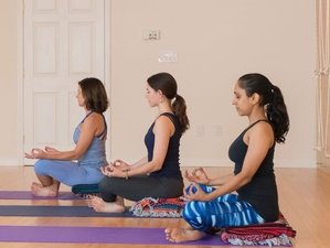 74 Day 200-Hour Online Yoga Teacher Training with Dhyana Yoga Arts
