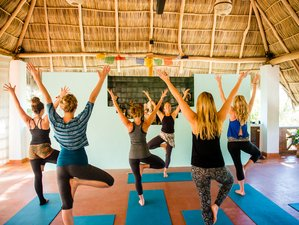 7 Days Soulshine Yoga Retreat in Sayulita, Mexico