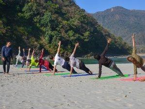 5 Days Enchant Yoga & Meditation Retreat In Rishikesh, India