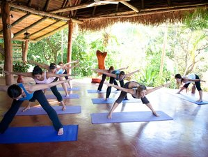 8 Days Juice Cleanse, Yoga & Meditation in Costa Rica