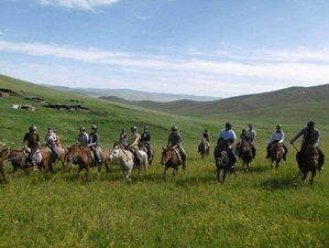 13 Day Mini Gobi and Steppes Horse Riding Trek in Mongolia