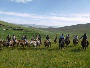 13 Days Mini Gobi and Steppes Horse Riding Trek in Mongolia