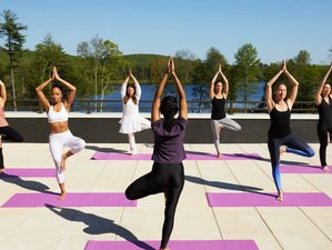 8 Day Immunity Enhancer Detox and Yoga Wellness Retreat in New York