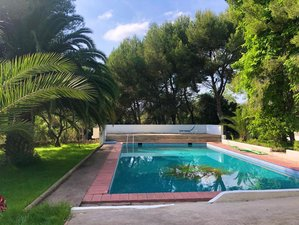 3 Day Retreat: Reconnect, Recharge and Boost your Energy in an Organic Farm in Bétera, Valencia
