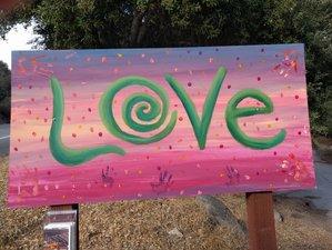 4 Days Beginning Healer's Workshop, Hiking and Yoga Retreat in San Diego, USA