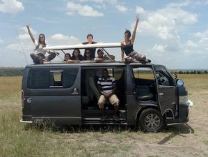 7 Days Best of Kenya Safari Tour in Maasai Mara, Naivasha, Nakuru, and Amboseli