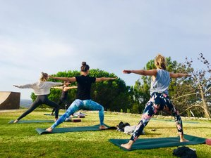 5 Day Surf and Yoga Holiday in Aljezur, Algarve