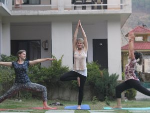 60 days 500-Hour Yoga Teacher Training in Himalaya, India