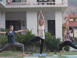 90-Daagse 500-urige Yoga Docententraining in India