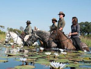 6 Days Astounding Horse Riding Safari in Okavango Delta, Botswana