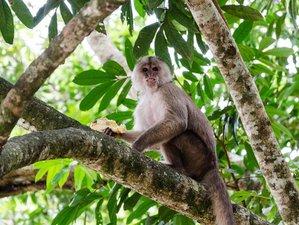 2 Day Wildlife Tour in Napo, Ecuador