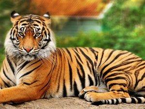 3 Days Cultural Safari in Chitwan National Park, Nepal
