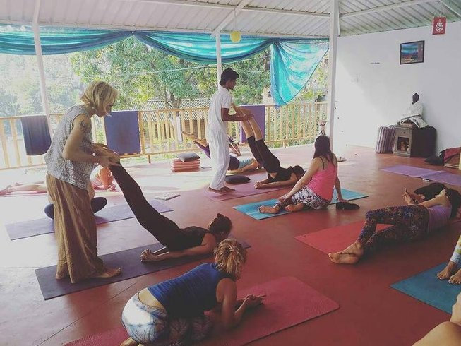 7 Tage Basti Detox, Meditation, und Yoga Retreat in Goa, Indien