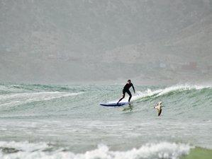 8 Day for Advanced Surfer Surf Camp in Tamraght, Souss-Massa