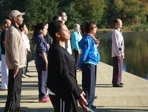 5 Days Hudson Valley Self-Renewal Detox Retreat in New York, USA